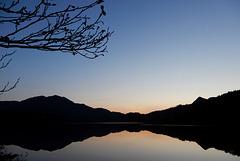 Evening swim in Loch Achray