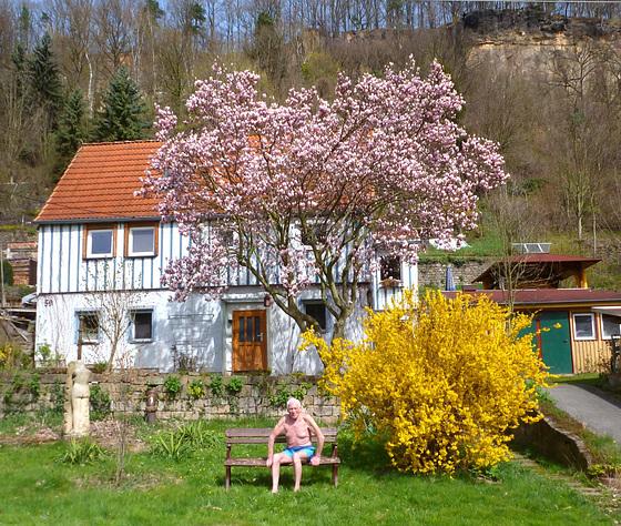 Mein Haus und mein Garten im Blütenschmuck