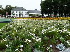Blumenpracht im Schloss Koblenz