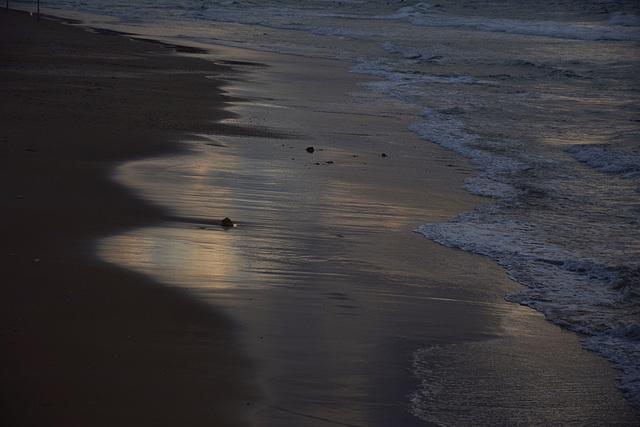 BEACH  VS  SEA