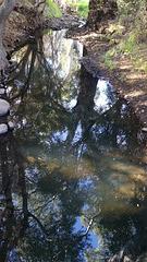 first creek Burnside
