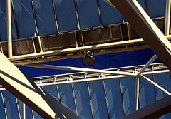 looking   up_01