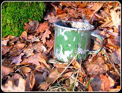 326/365 - Fundstücke im Wald