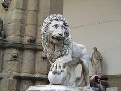 Il leone e la palla