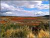Paisaje de La Rioja alavesa, 1
