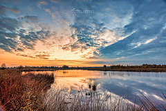 Sonnenaufgang Hahnenmoor