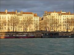 Lyon (69) 20 janvier 2021. 8h40.