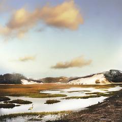 wetland dunes
