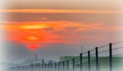 foggy sunset fence