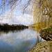 Frühlingsstimmung - Spring Mood - Please enlarge!
