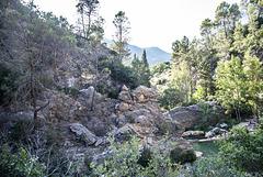 Pozas del río Borosa (Sierra de Cazorla)
