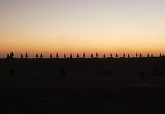 Sonnenschirm Parade - Parade of the sunshades