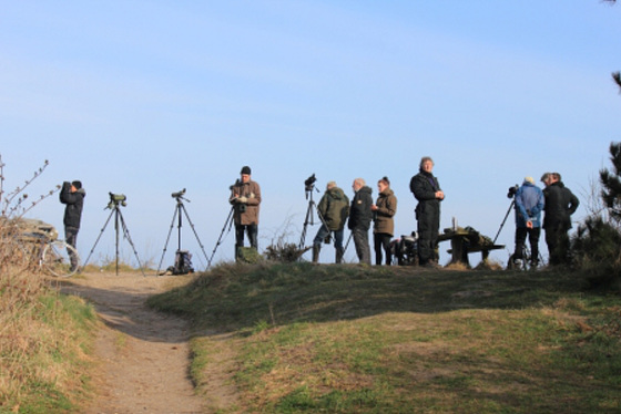 Photographers at Gilbjerg Head (Birders to some)