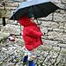 ...unterm Regenschirm