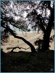 ** Sur l'Ile de Noirmoutier **