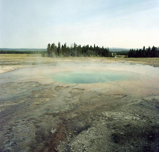 Near Grand Prismatic Spring, Yellowstone