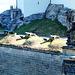 Festung Königstein. Artillerie. ©UdoSm