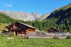 Mountain Lodge 'Hofalm' (1)