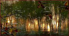 D'or et de jade, le rideau du soir...