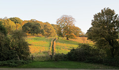 Autumn in Yorkshire - H.F.F. !