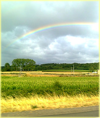 Chemin faisant... On the way... (clic sur photo) [ON EXPLORE]