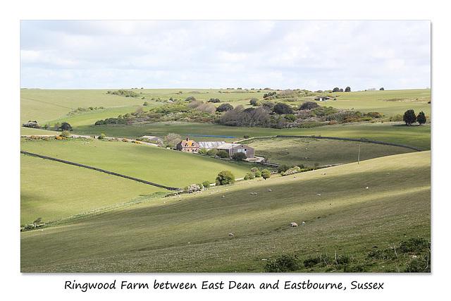 Ringwood Farm - East Dean - Sussex - 30.4.2015