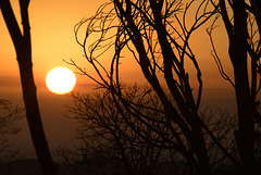 Sun rises over fire aftermath