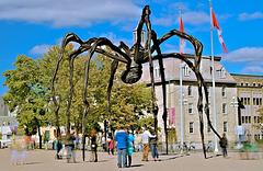 Arachnophobie free !