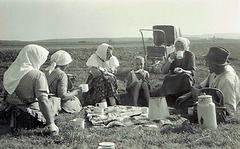 Tea Break in the year 1945/46 approx.