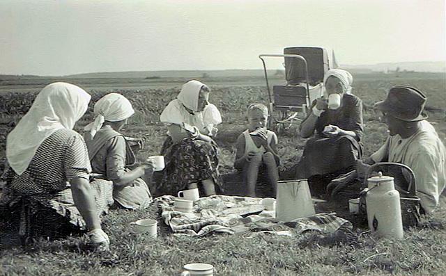 Brotzeit bei der Heuernte - Tea break during harvesting