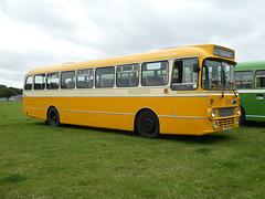Buses Festival, Peterborough - 8 Aug 2021 (P1090347)