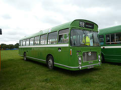 Buses Festival, Peterborough - 8 Aug 2021 (P1090348)