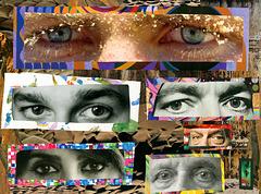 the human gaze