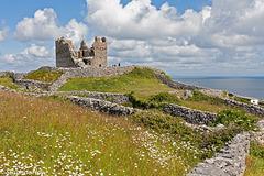 O'Briens Castle (PiPs)