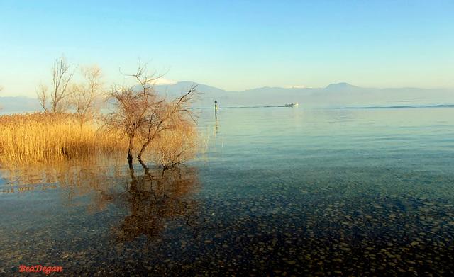 HFF to you All !:-) Un canneto come fence sul Lago di Garda.