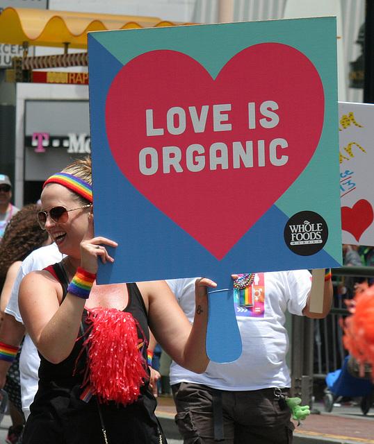 San Francisco Pride Parade 2015 (6952)