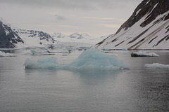 Svalbard, Floating Ice Floes in Hornsund-fjord