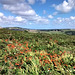 Inland Cornwall