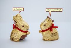Easter Bunny Talk