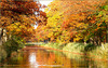 Autumnal view over the Canal...