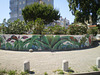 Street art - fauna and flora.