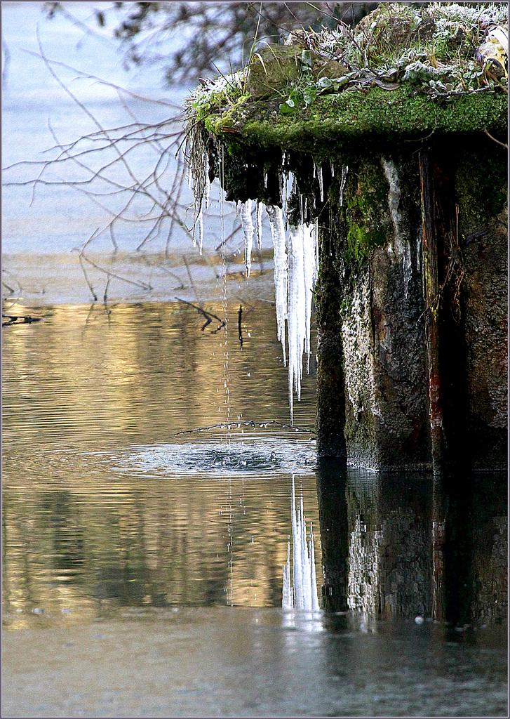 Pour ne pas rester que de glace: Les photos hivernales 44158994.6614cea5.1024