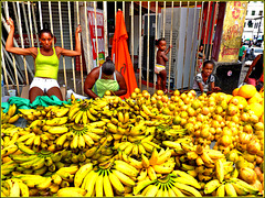 Salvador de Bahìa :  os frutos do Brasil - (605)