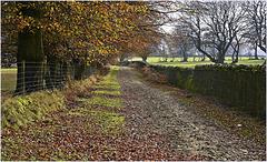 Manmoel Lane