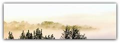 Comme une île dans le ciel ... Matin brumeux