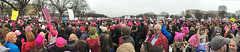 Women's March on Washington - 21 Jan 2017