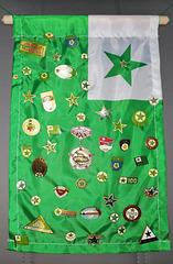 Mia kolekto de Esperanto - insignoj.