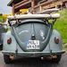 Mountain Rescue Beetle (1)