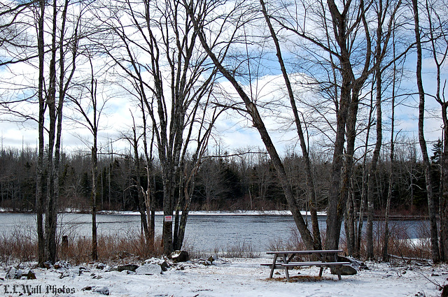 Spring In DownEast Maine Is No Picnic