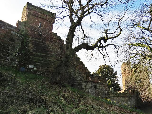 bonewaldsthorne's tower, chester